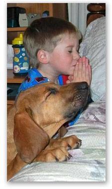 PRAYER REQUEST BASKET AT TRINITY ORTHODONTICS